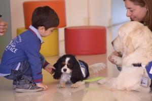Los niños suelen aceptar estupendamente a los canes